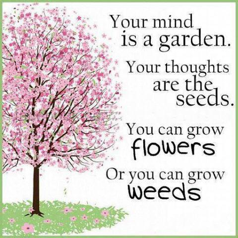 your-mind-is-your-garden